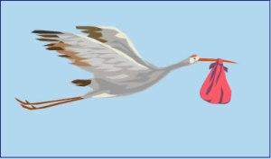 My Mommyology Stork