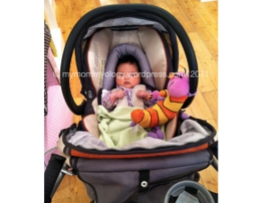 My Mommyology Jamie in stroller
