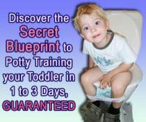 My Mommyology Potty Train in 3 days